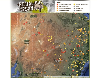 Record Feral Pig Activity And Create A Local Map